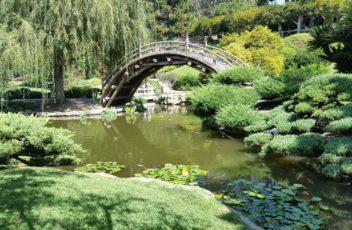 japanese_garden_zen_pond_oriental-610363.jpg!d